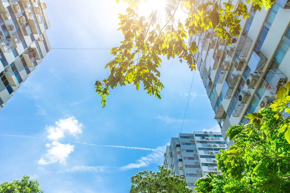 Modern buildings, trees and blue sky. Photo.