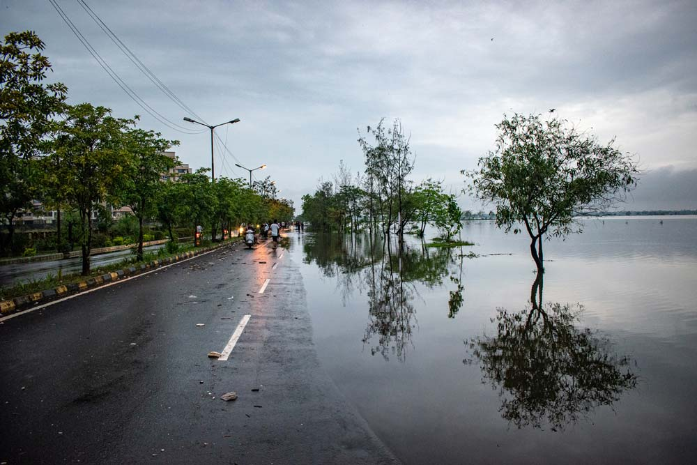 Flooded road and trees in the water. Photo.